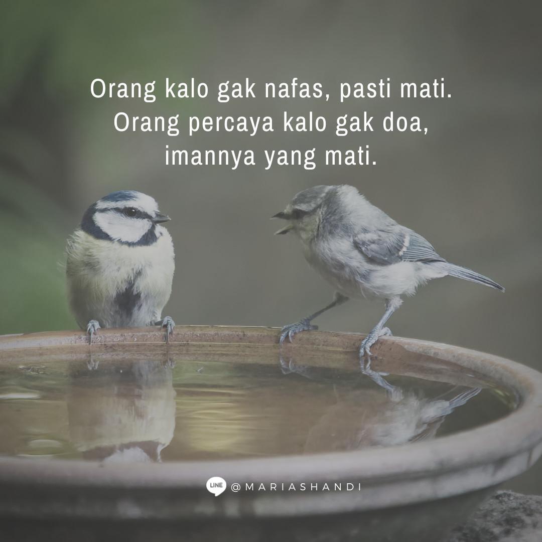 Belajar Mendengar