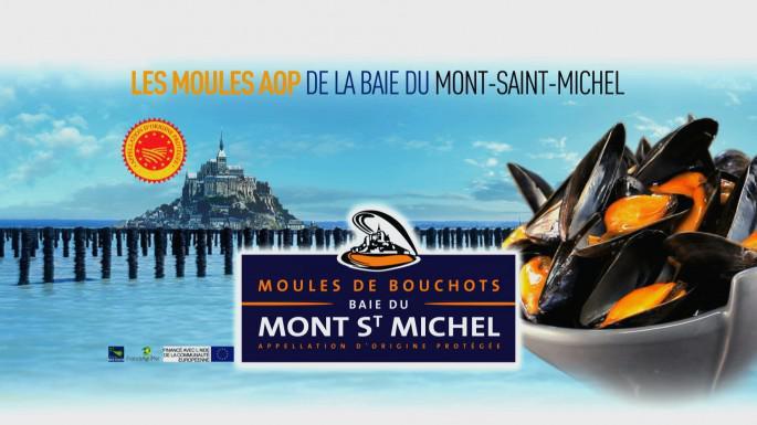 PLEINE SAISON DE LA MOULE DE BOUCHOT!!!