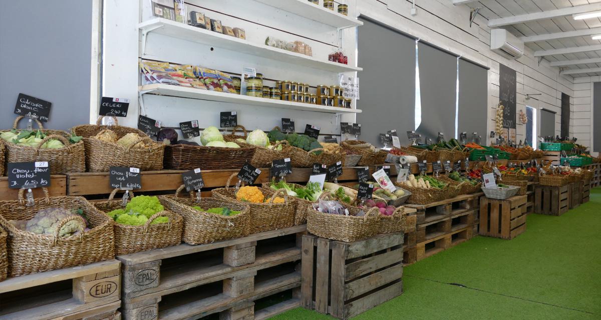 Jardinerie Constantin
