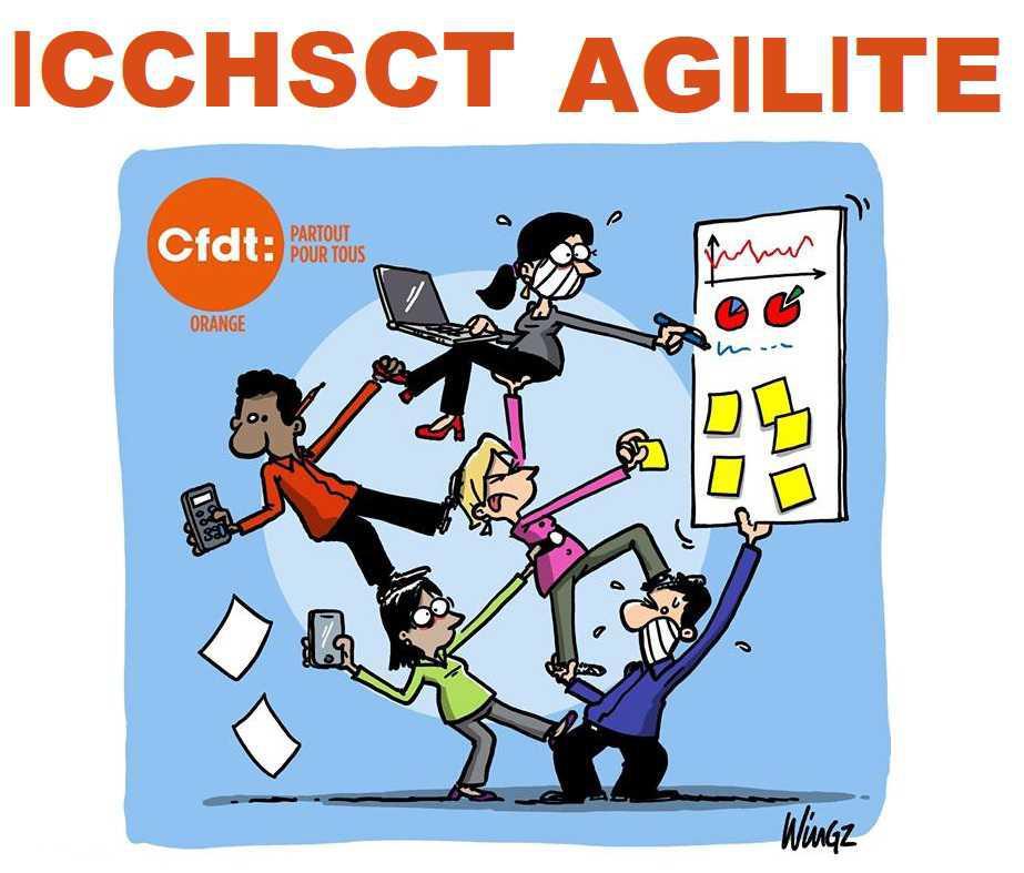 L'ICCHSCT AGILITE A RENDU SON AVIS