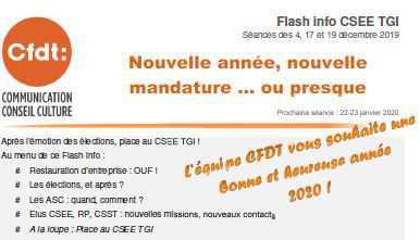 Flash info CSEE TGI-Séances des 4, 17 et 19 décembre 2019