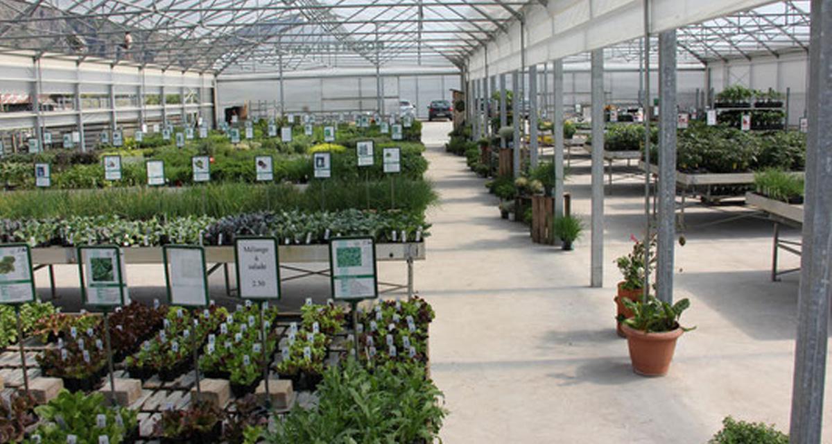Roduit Plants SA