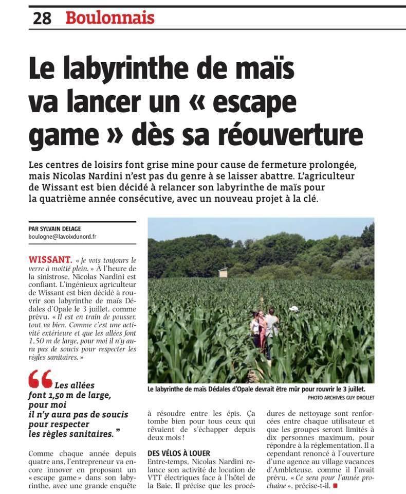 À Wissant, le labyrinthe de maïs va lancer un escape game dès sa réouverture