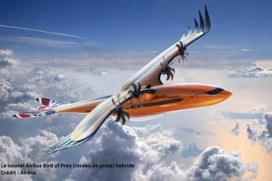 Airbus : un nouvel avion hybride, inspiré d'un oiseau de proie