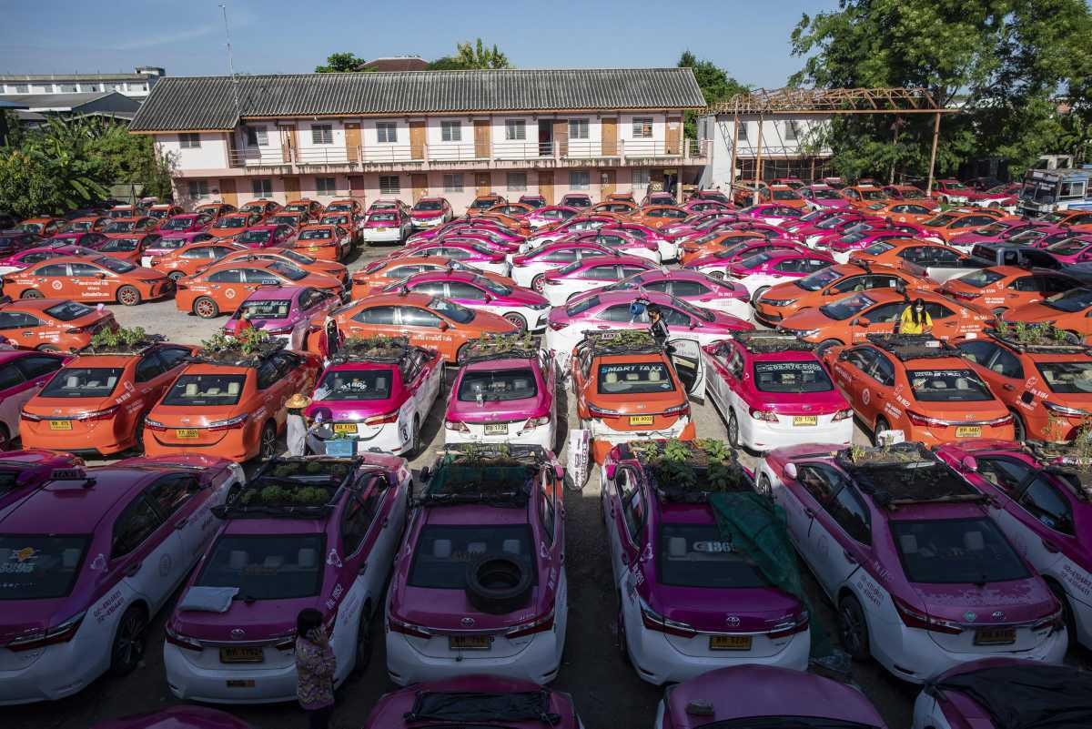 [Focus] - Insolite : A Bangkok, les taxis inutilisés sont transformés en potagers