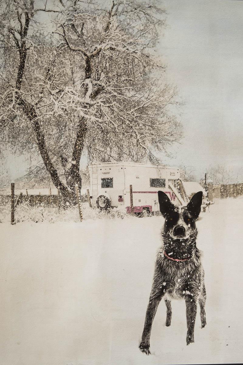 Birrell Jones Gallery