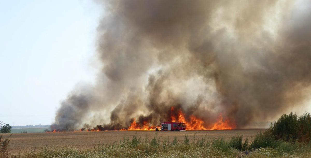 Partage d'information opérationnelle : Les feux de surface agricole