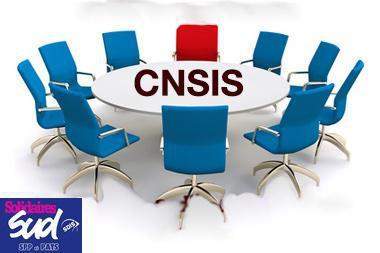 Sud SDIS est à la CNSIS :
