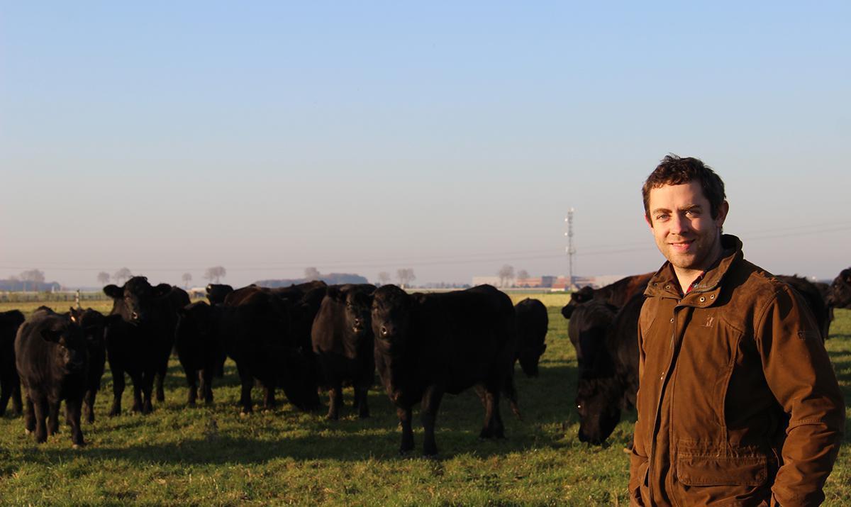 Du bœuf Angus made in Eure-et-Loir au menu des fêtes