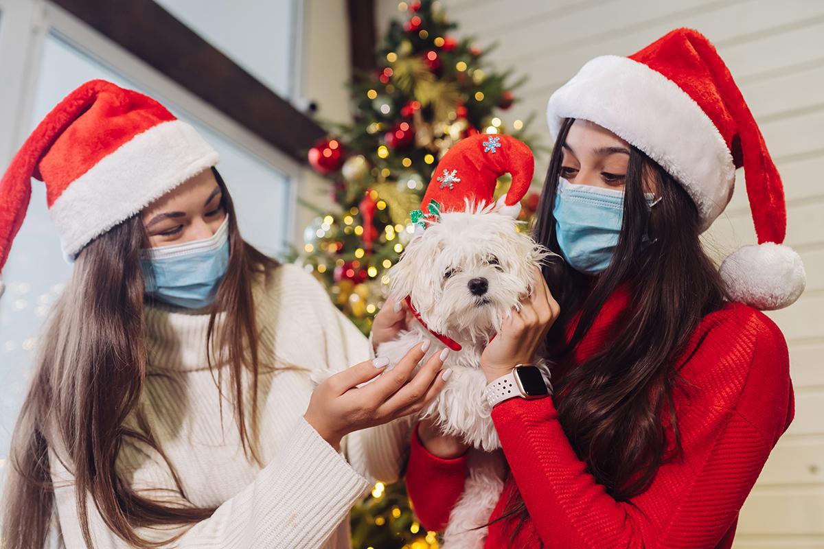 [CH Eure Seine] Covid-19 : la prudence est de mise pour les fêtes de Noël