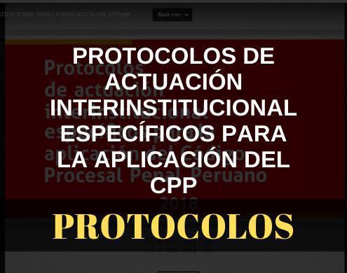 De actuación interinstitucional específicos para la aplicación del CPP
