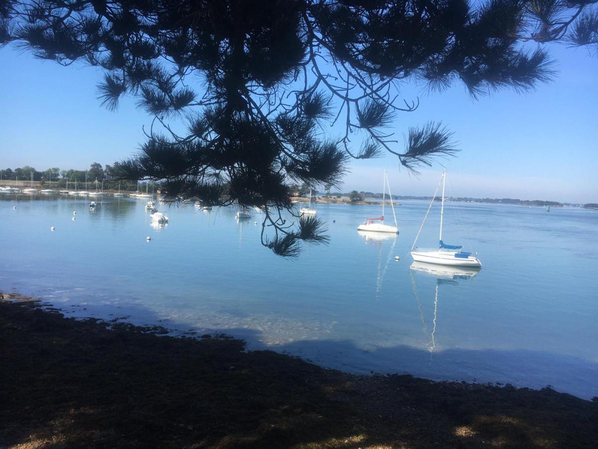 Mission Océan, une journée pour sensibiliser autour de l'écosystème marin