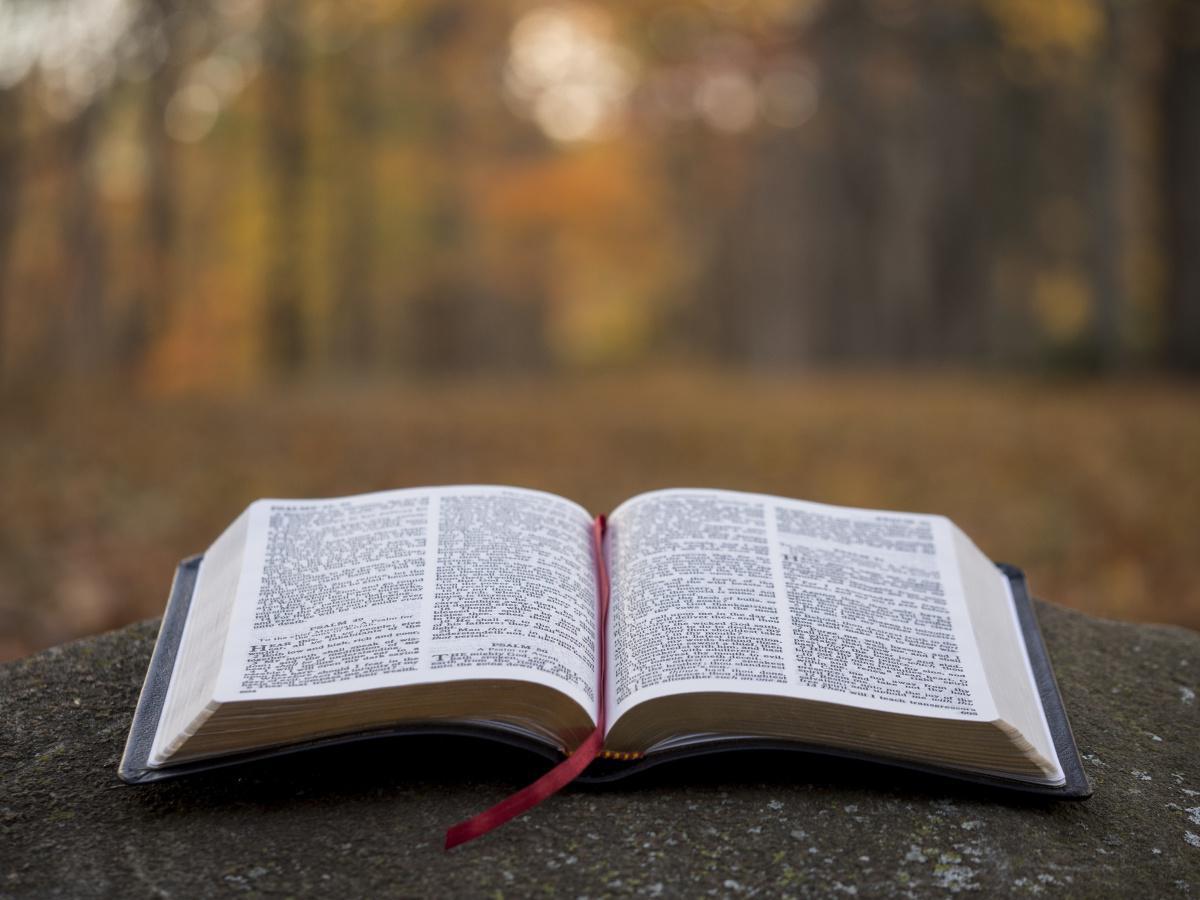 Online Bible Study - Kebijaksanaan berdasarkan Alkitab