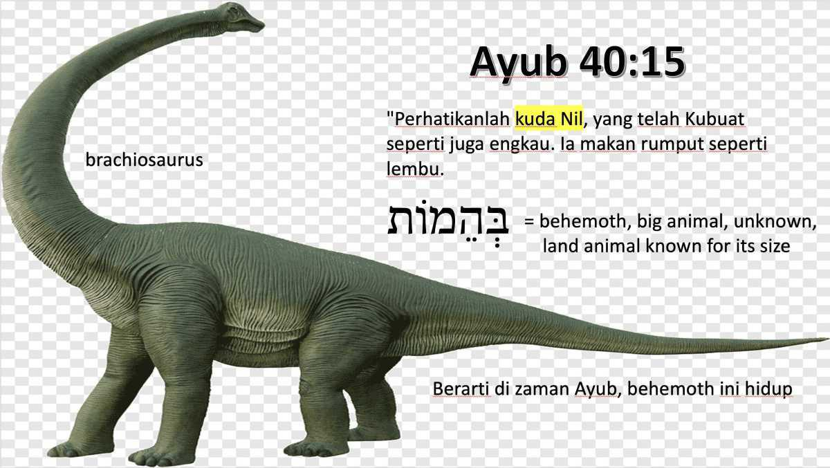Dinosaurus di Ayub 40:15