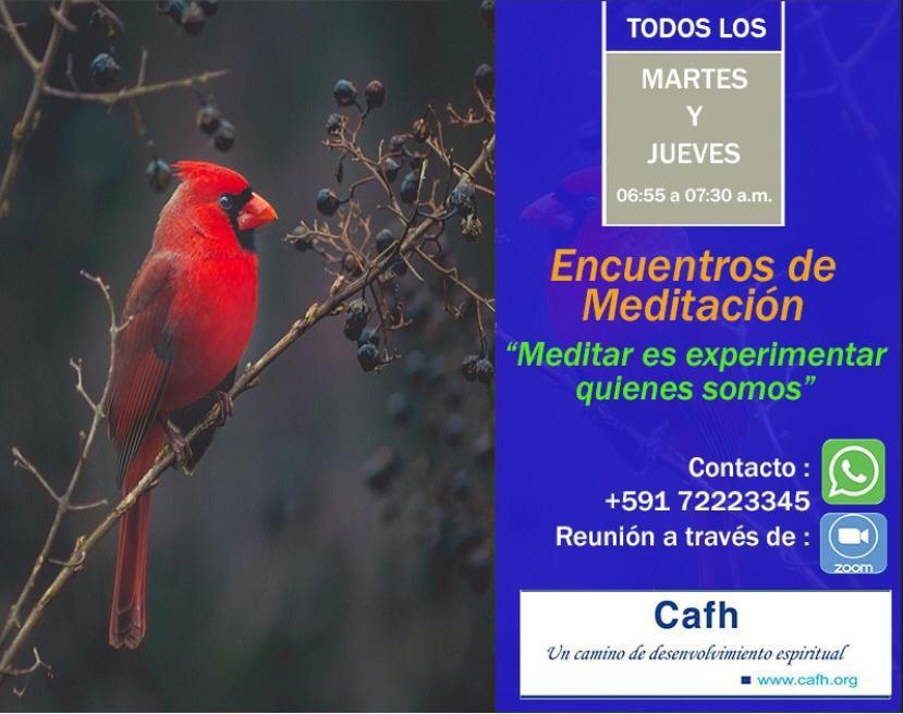 Encuentros de Meditación | Cafh Bolívia