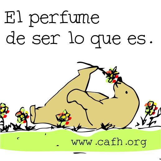 el perfume - español