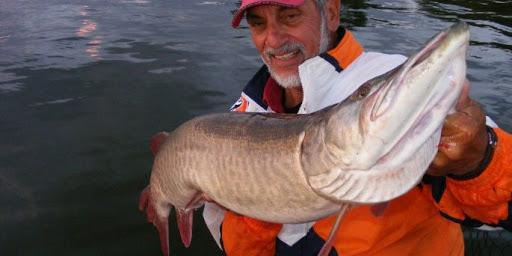 3 Sure-Fire Spots for Big Muskies