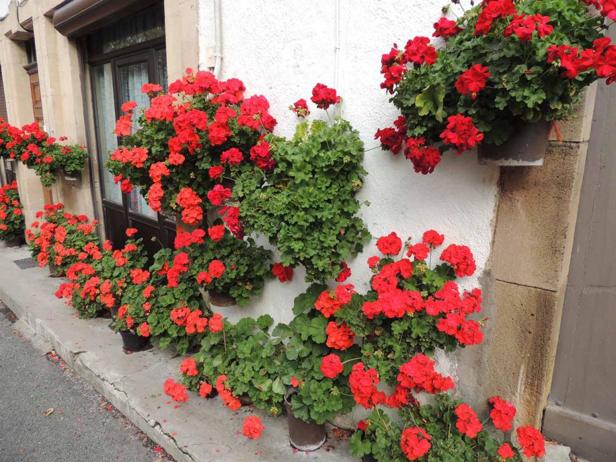 Brusque : village fleuri