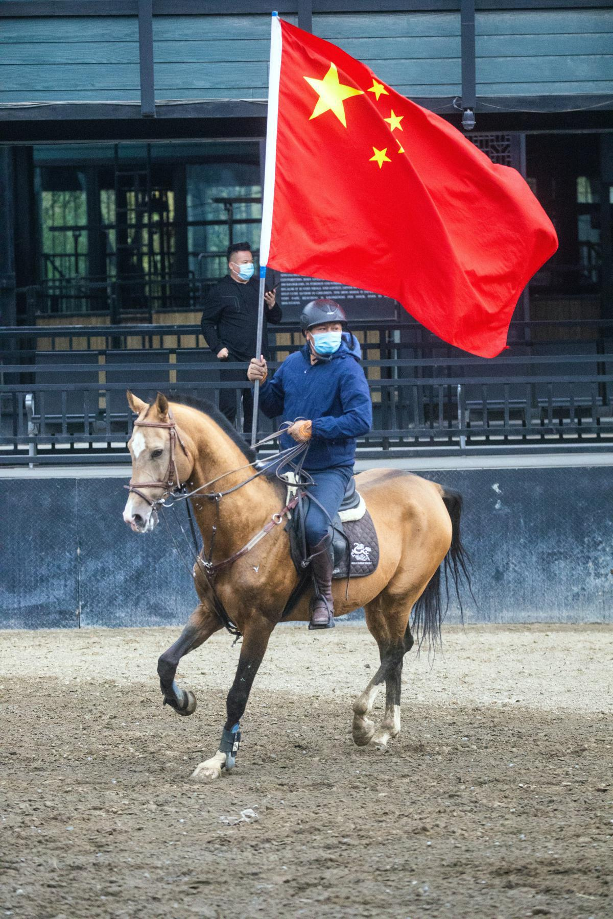 Les allures du cheval