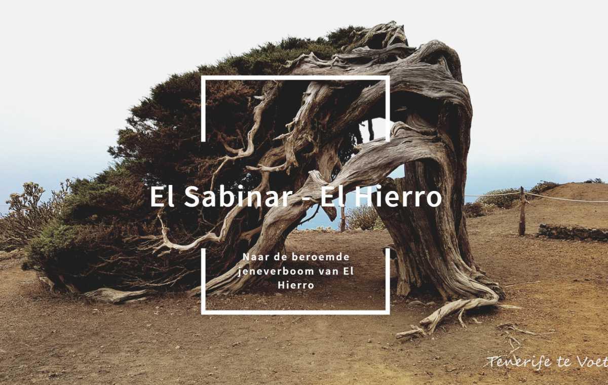 EL SABINAR - EL HIERRO ☆☆☆