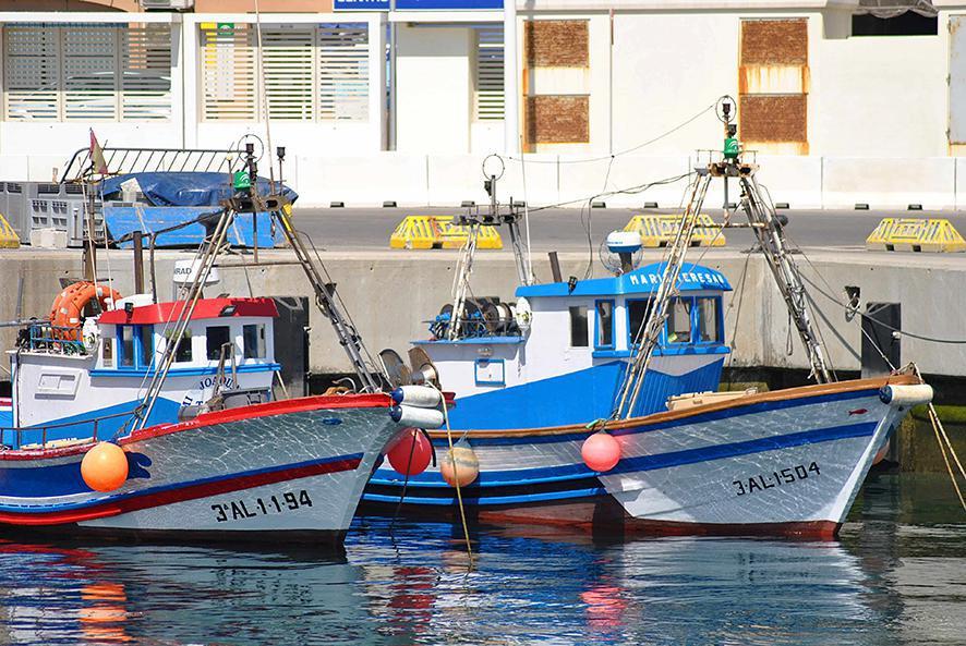 Lockdown dwingt de visserijsector om zichzelf opnieuw uit te vinden