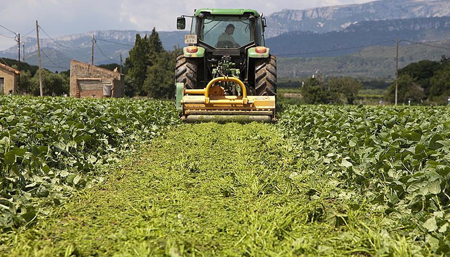De sluiting van de hotels dwingt de boeren om een afzetmarkt voor hun producten te zoeken