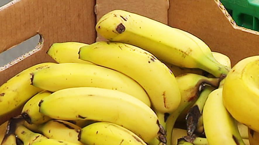 Dagelijks bananen voor 5.000 gezinnen in kwetsbare situaties