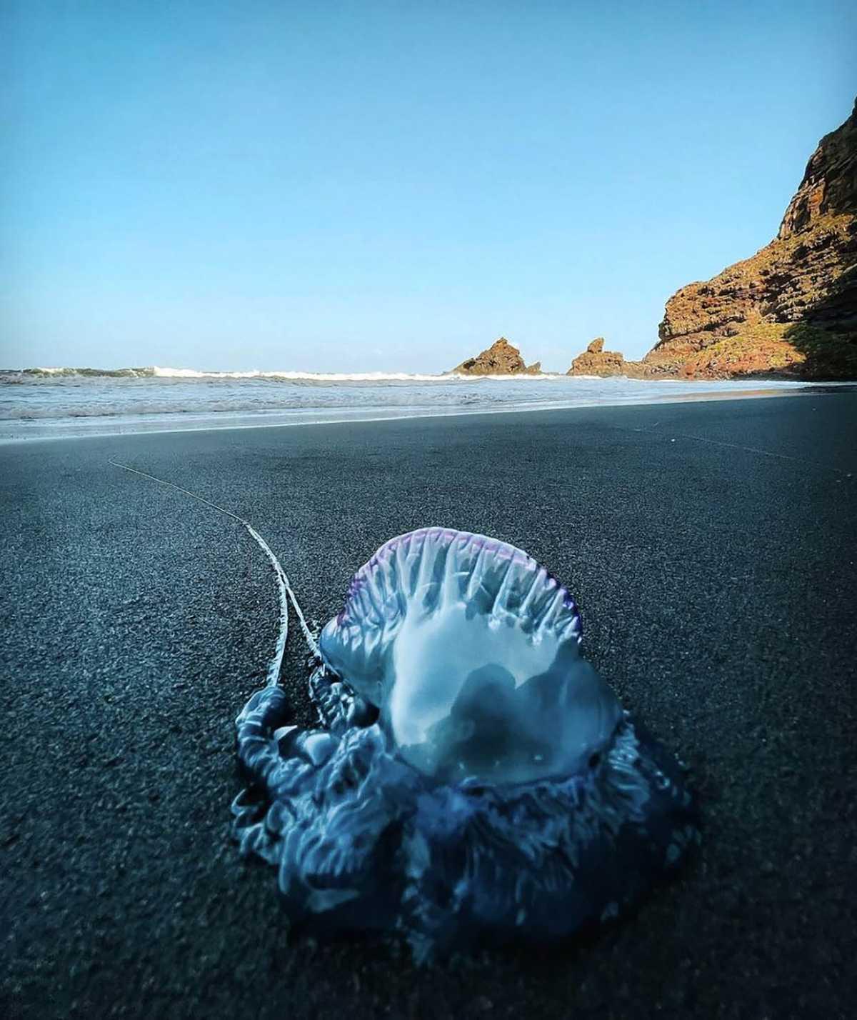 La Palma verleidt National Geographic