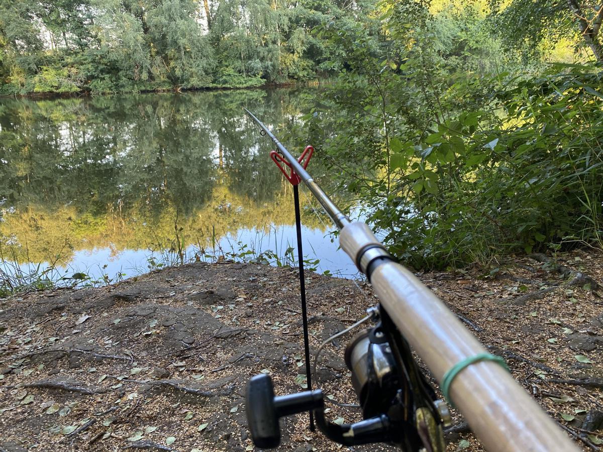 Fischerprüfung online