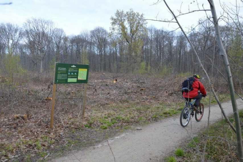 Coronavirus : les parcs, berges et forêts interdits jusqu'au 15 avril