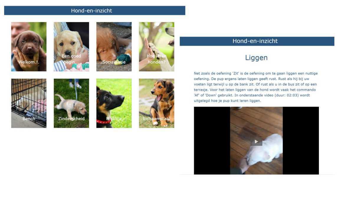 Puppy-online