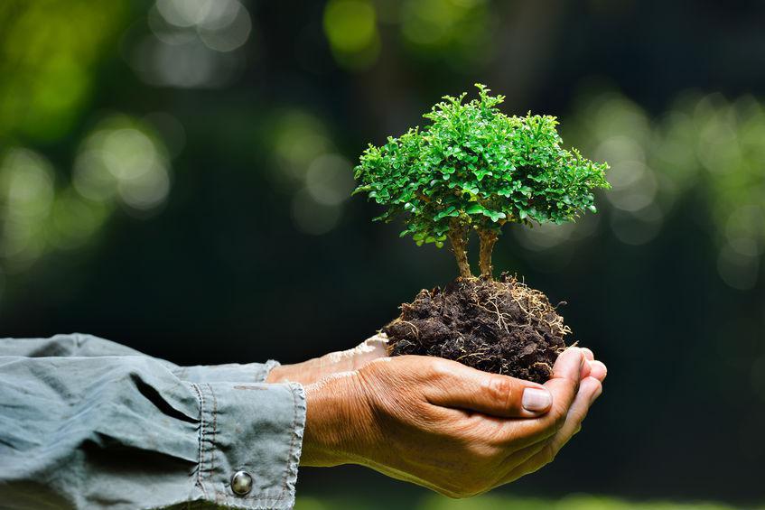 Jubileu pela Terra: Novos Ritmos, Nova Esperança