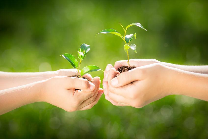 Respeitar os recursos do planeta