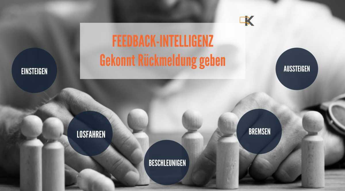 Feedback-Intelligenz
