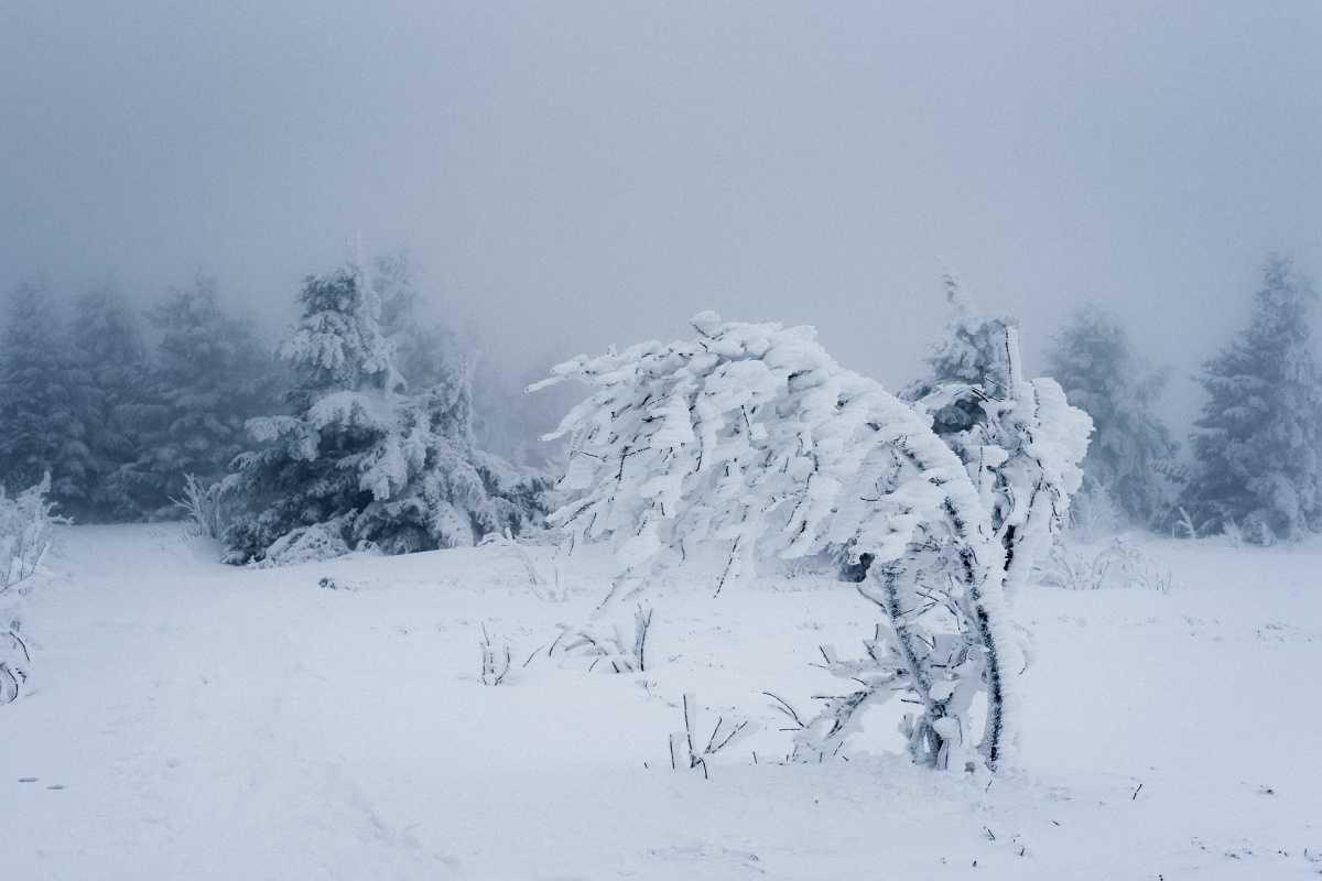 Westnetz auf Sturm und Schneefall vorbereitet