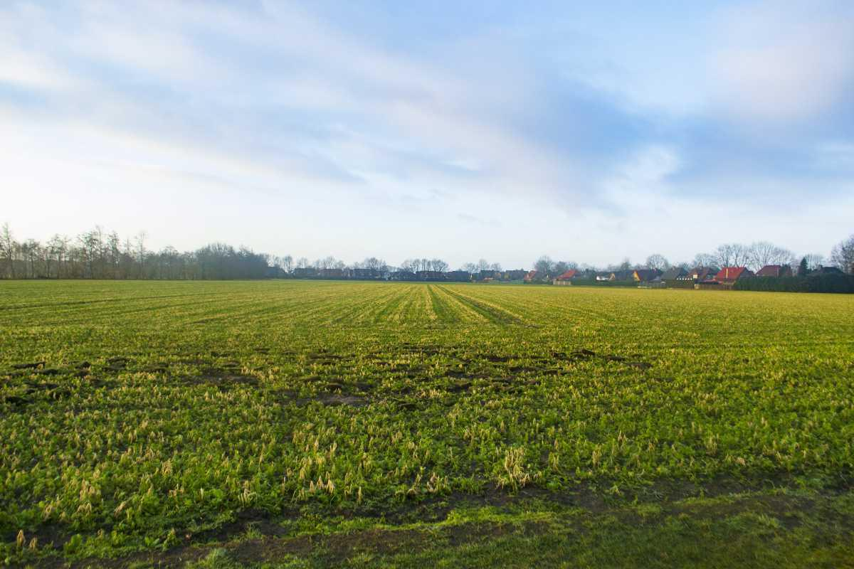 Baugebiet zwischen Erika und Altenberge zu 2023 fertig?