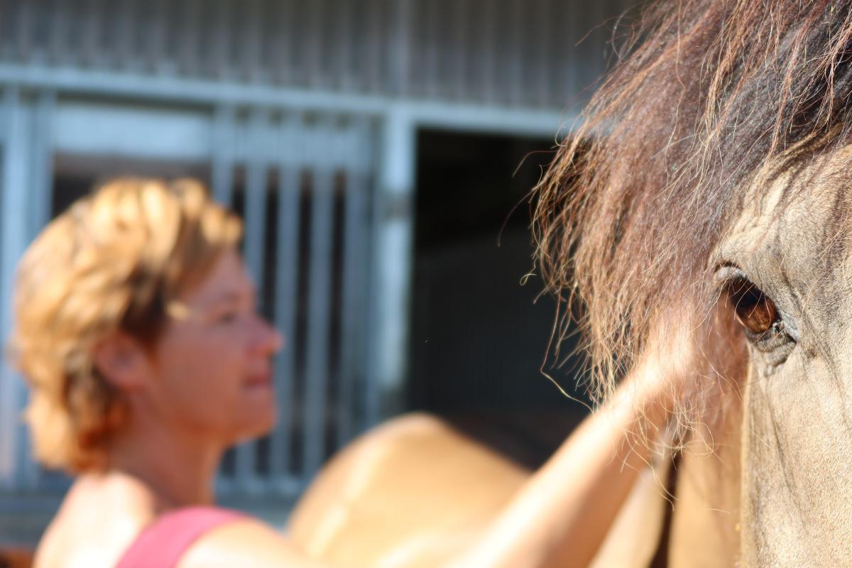 Aline Crausaz - Massages équins