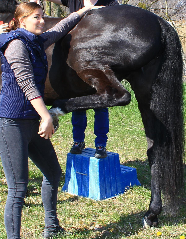 Alexandra Solakovic - Ostéopathie et NST