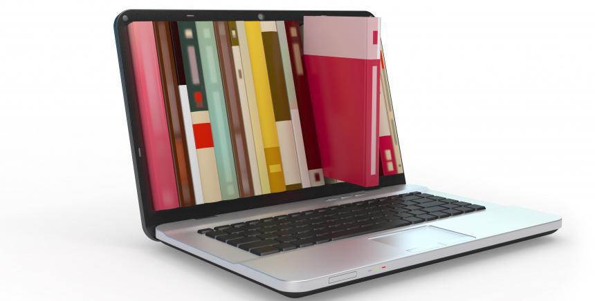Bouquets de ressources numériques thématiques