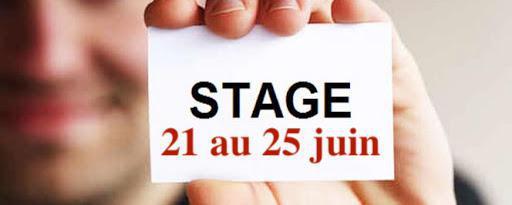 Stage : Défenseurs Syndicaux devant les Prud'hommes - (niveau débutant)