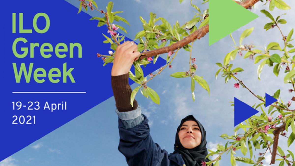 Semaine verte de l'OIT : comment reconstruire en mieux et plus écologique