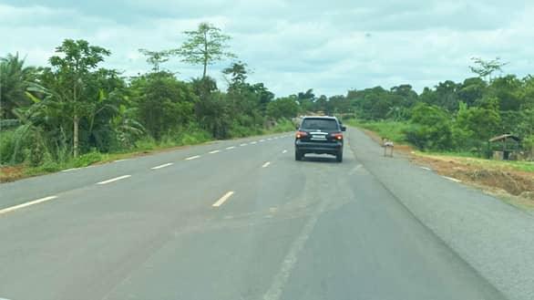 Zlecaf : le Congo entend renforcer le trafic avec le Gabon