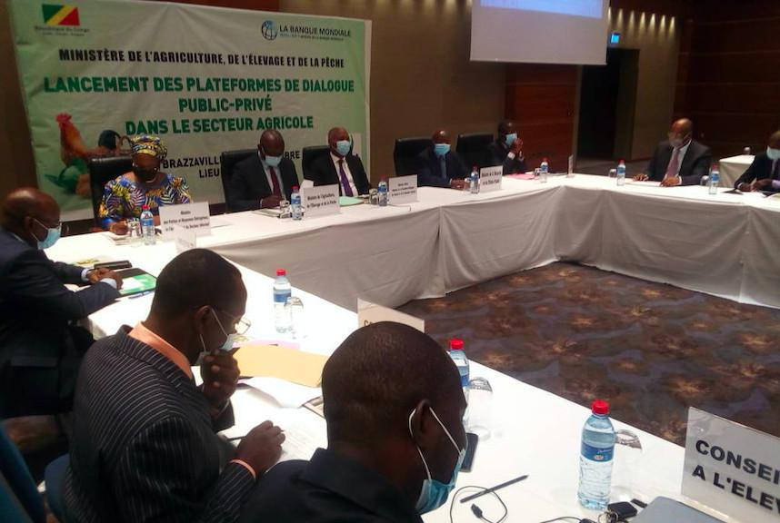Économie. Le #Congo instaure un cadre fiscal attractif pour les entreprises agricoles
