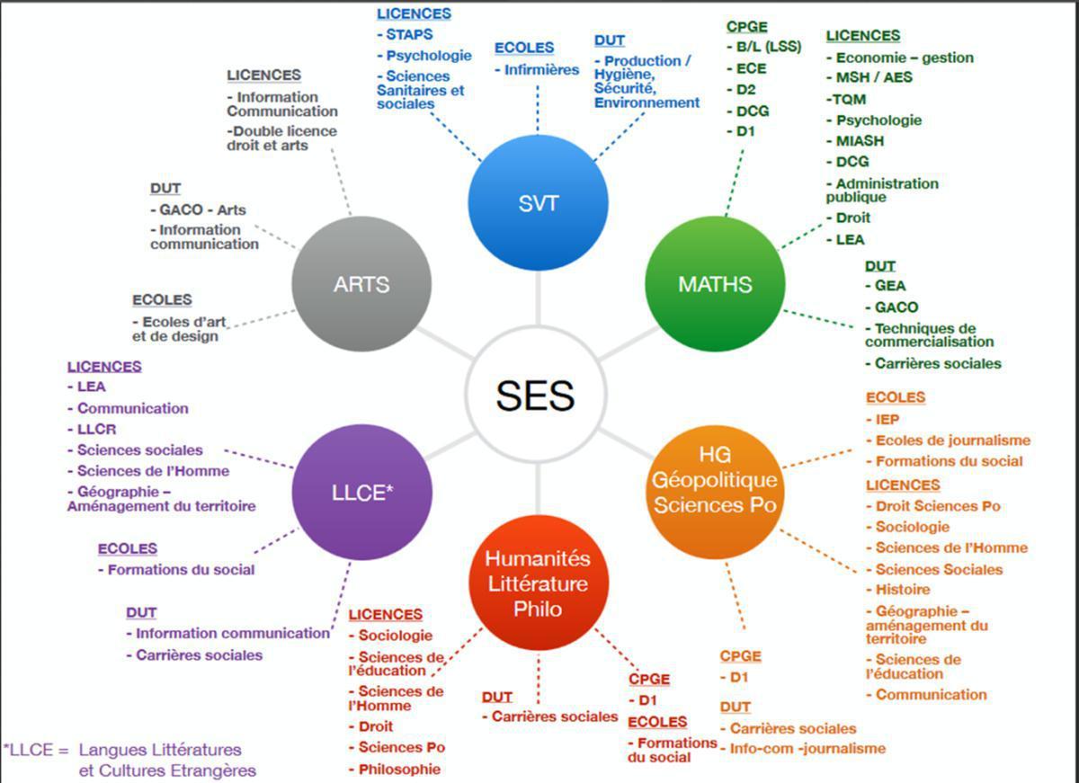 L'enseignement de spécialité Sciences Économiques et Sociales (SES)