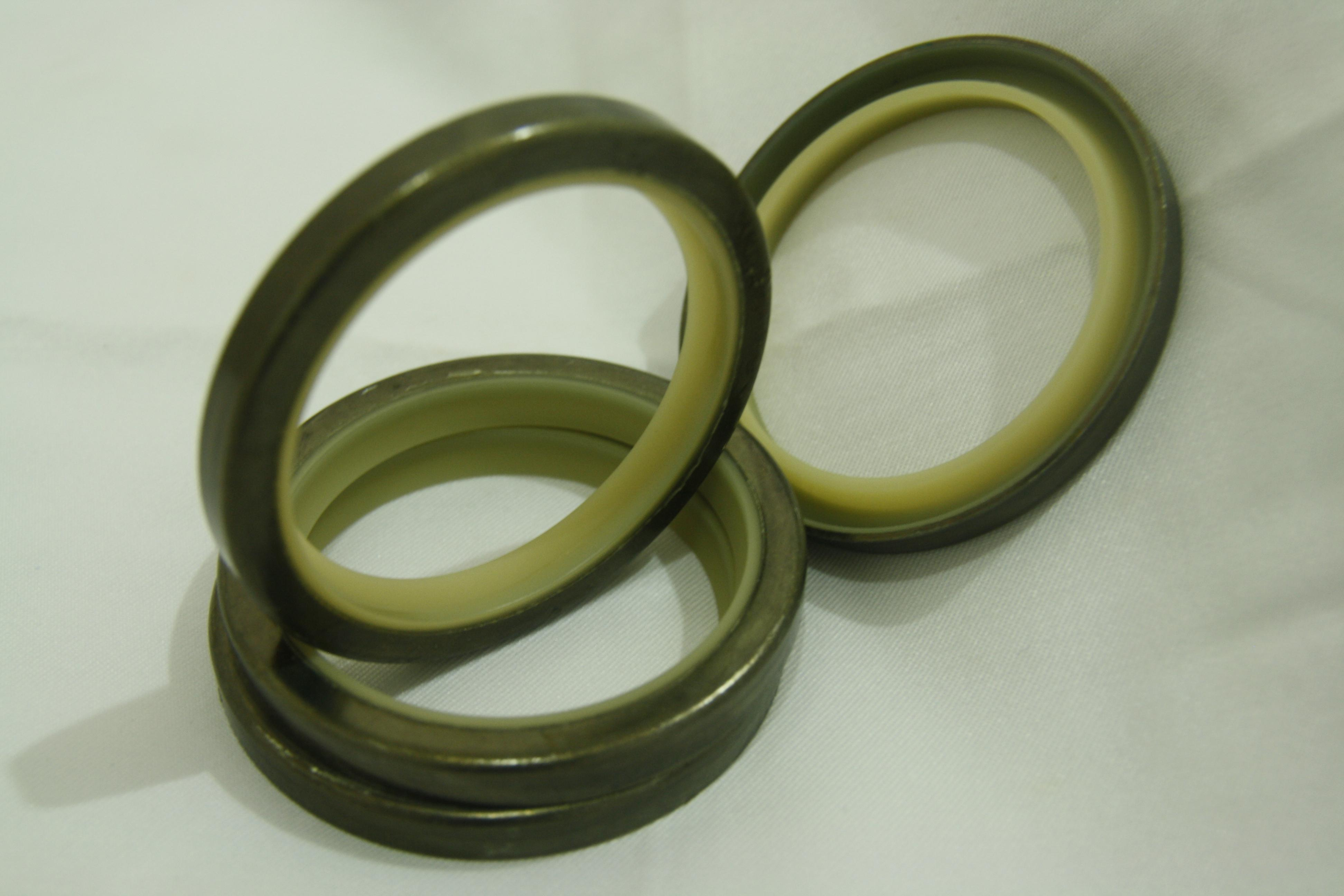 Dust Seal-DLI-3