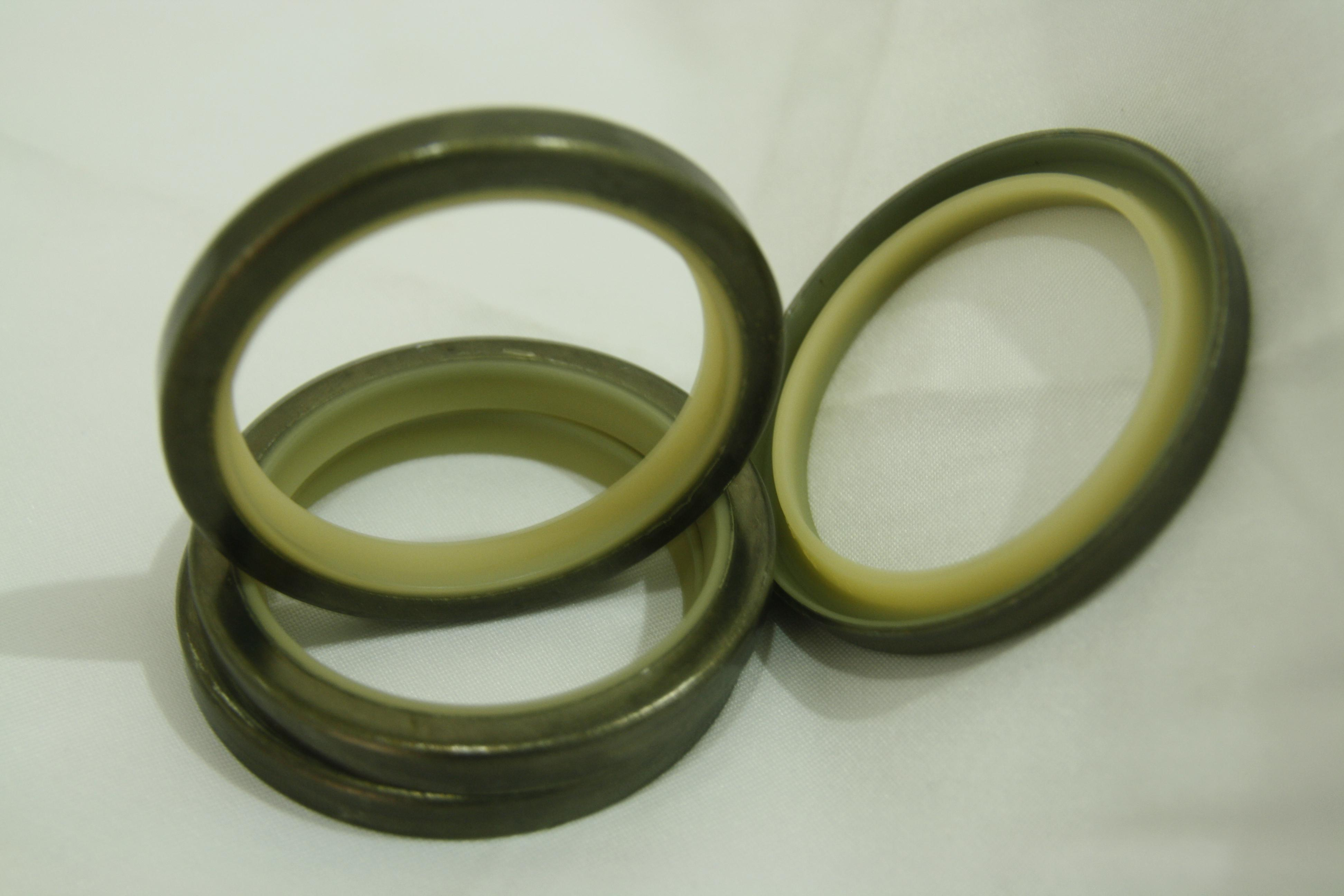 Dust Seal-DLI-4