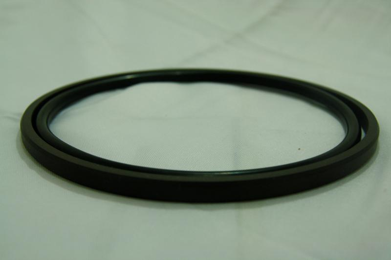 Piston Seal-DSeal-1