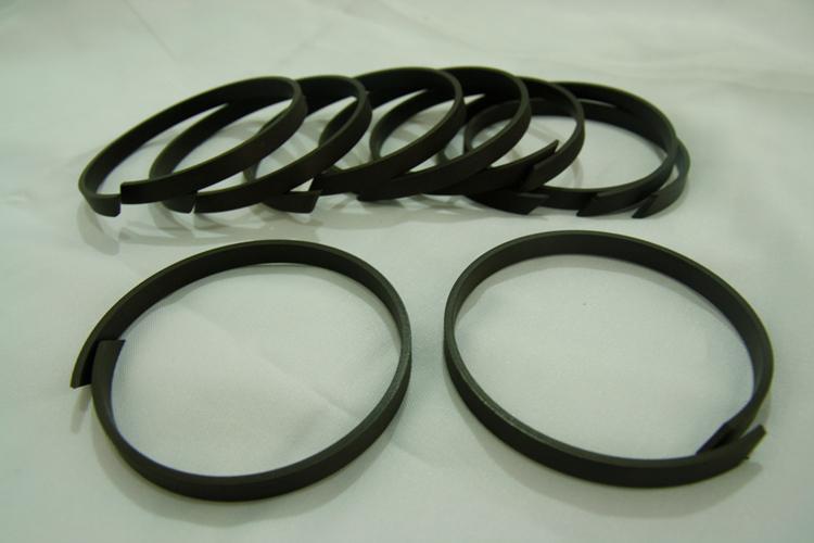 Wear Ring-CWR-1