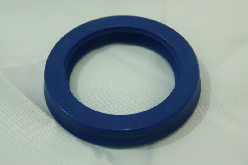 Rod Seal-605-5