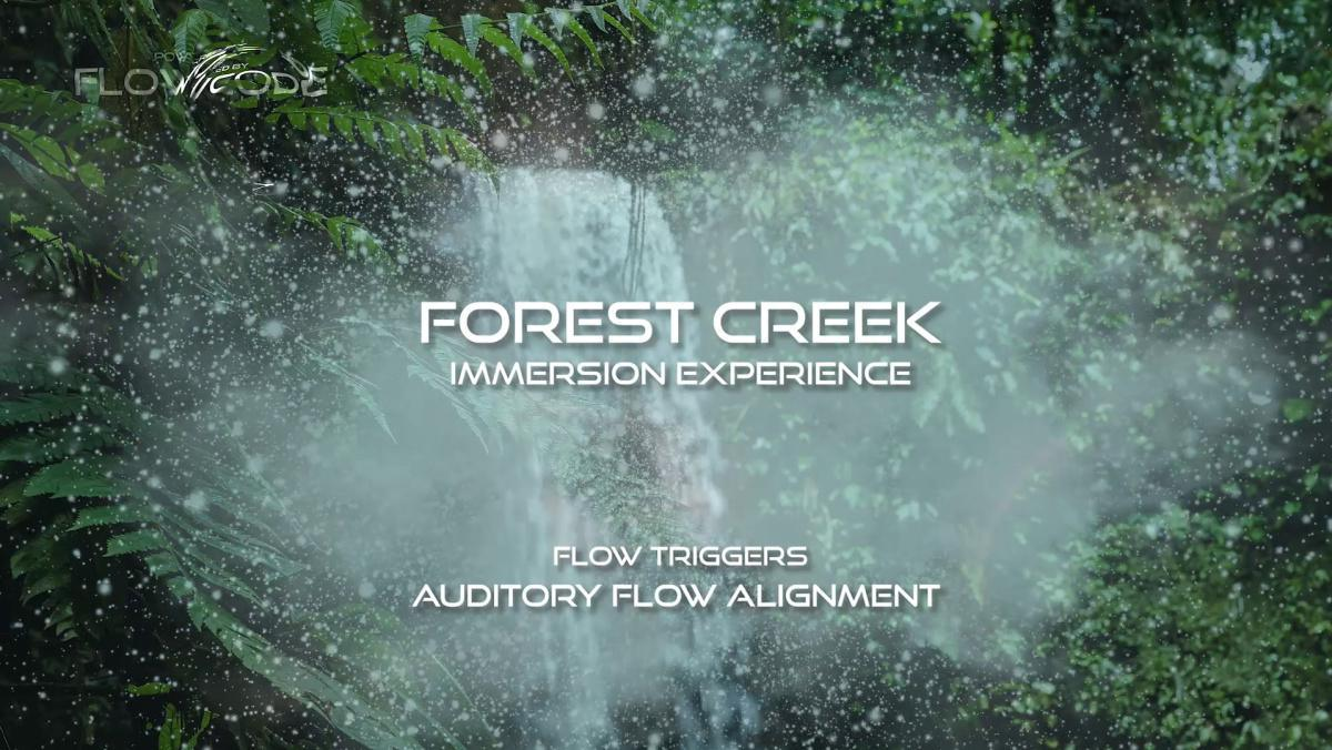 Forest creek - Sound immersion experience (Free)